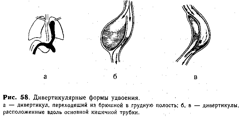 Вирусный гепатит в антитела